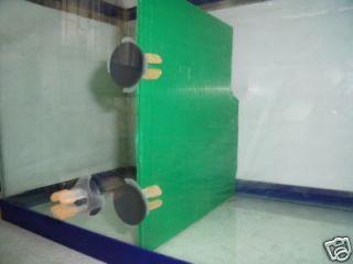 fish tank divider in Aquarium & Fish