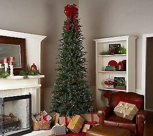 Lights Prelit 6.5 Slender Frasier Fir Christmas Tree Clear Lights