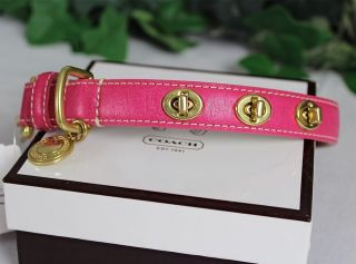 coach dog collar pink in Leather Collars