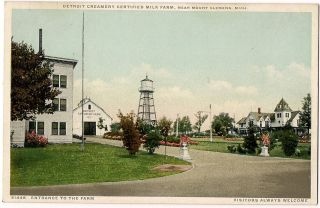 Mount Mt. Clemens, Michigan, DETROIT CREAMERY DAIRY MILK FARM, 1910