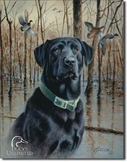Ducks Unlimited   Great Retrievers Metal / Tin Sign 12.5 x 16 (#1203
