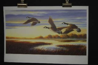 Ducks Unlimited Print in Prints
