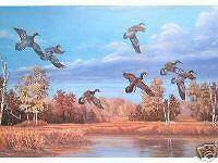 DUCKS UNLIMITED DOUG BERG WILDLIFE DUCK PRINT WI