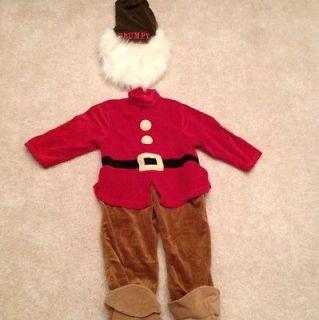 Disney Store GRUMPY DWARF Costume Boys 5 6 Rare
