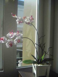artificial flower arrangements in Home Decor