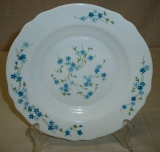 Arcopal France Veronica White w/ Blue Flowers 9 Rimmed Soup Bowl 10