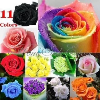 50pcs Rose Seeds Blue Red Purple Pink Black Rainbow Colored Petals