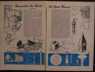 bird house plans in Home & Garden
