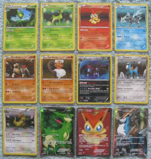 HOLO RARE BW37 (MINT!!!) PROMO Black Star Black & White Pokemon Card