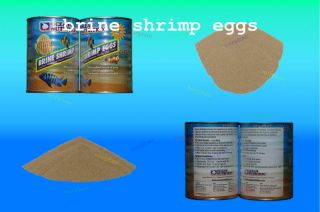 SHRIMP EGGS 10g GSL GREAT RESULTS BABY FRY FISH FOOD FOR BREEDERS