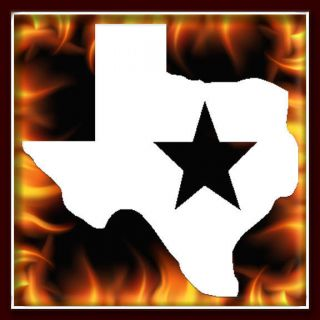 Texas State Lone Star airbrush stencil template harley paint