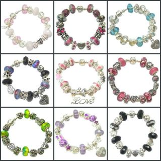 CHARM BRACELET LADIES/FAMILY IDEAL BIRTHDAY/XMAS GIFT 17 CHARMS/15