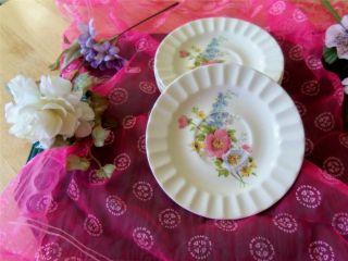 & Glass  Pottery & China  China & Dinnerware  Knowles