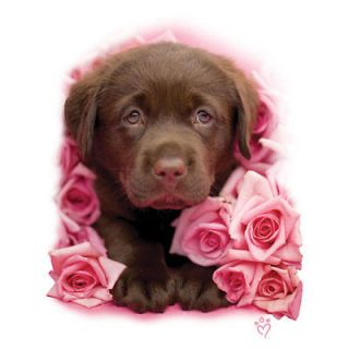 Chocolate Labrador Puppy Dog With Pink Roses Ladies Classic Fit White