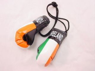 BOGO Mini Boxing Glove Sets   IRELAND   Auto Dorm Decor