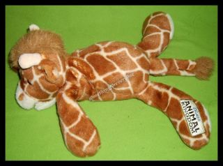 Disney Animal Kingdom Floppy Baby Giraffe beanbag plush stuffed animal