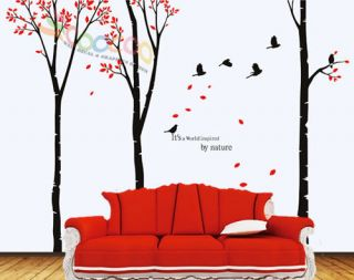 Decal Sticker Removable large 90 birch tree birds wit fallen leaves
