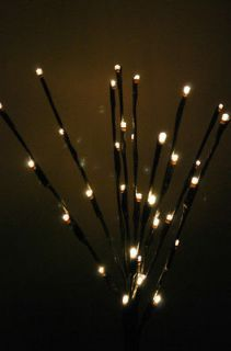 20 Lighted Willow Twig BRANCH    Battery operated    32 LED lights