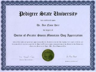 Doctor Greater Swiss Mountain Diploma Dog Puppy Lover