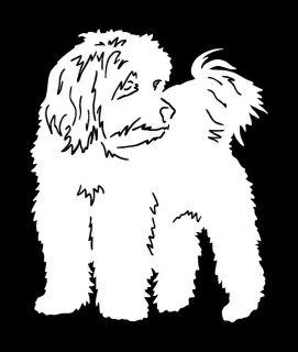 Coton de Tulear Dog Keychain Key Chain 3 x 2 by Artist Diane Wynen