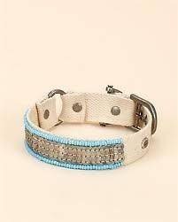 juicy couture dog collar in Collars & Tags