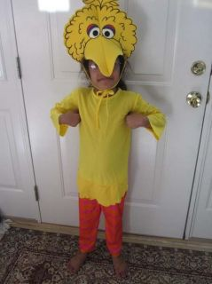 big bird costume in Costumes