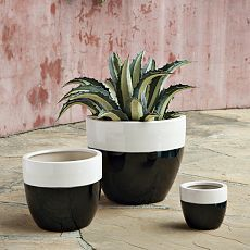 Garden Gifts, Gardener Gifts & Unique Garden Gifts  west elm  west