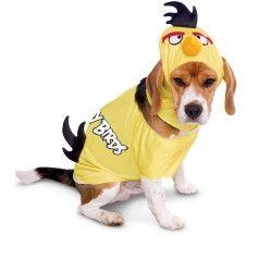Angry Birds Costume Detroit MI   Detroit MI, Buy Costumes, Detroit MI