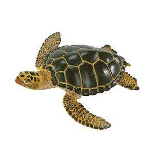 Safari Ltd. 274329 Green Sea Turtle Toy Sealife Reptile Animal