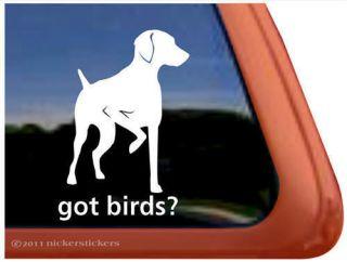 GOT BIRDS? ~ High Quality Vinyl Hungarian Vizsla Dog Window Sticker