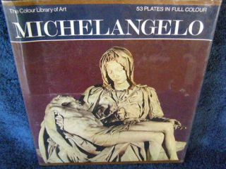 the colour library of art michel angelo time left $