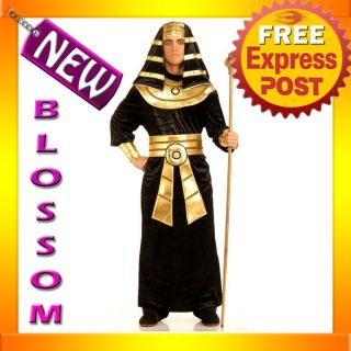 C215 Mens Egyptian King Pharaoh Deluxe Halloween Adult Costume