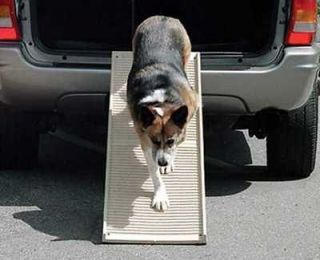 PETSTEP 2 PORTABLE FOLDING DOG PET STEP II RAMP 500 LB (PETStep II)