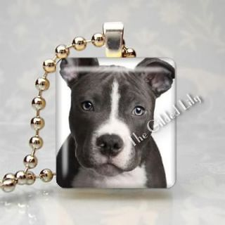 AMERICAN STAFFORDSHIRE TERRIER DOG BREED Scrabble Tile Pendant Charm