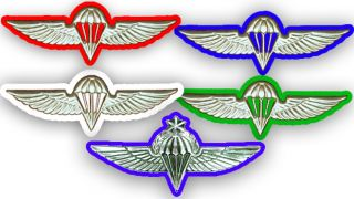 Israel IDF Army Free Faller Parachute Wings Qualification Badge Pin