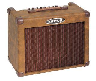 30 Watts Acoustic Guitar Amplifier Combo w 10 Amp Speaker New