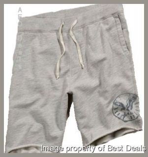 American Eagle AE Mens Active Graphic Dorm Shorts Long Gray New Free