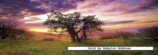Heye jigsaw puzzle 2000 pcs Alexander von Humboldt   Oak Tree 29472
