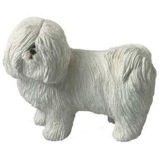 Coton de Tulear Dog Statue Mid Size Figurine Sculpture