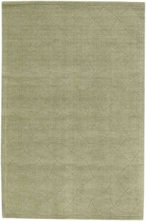 Premium Modern Area Rug Transitional Carpet Light Green 7x9 8x10