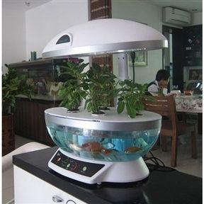 Aquaponics System Hydroponic Agricultural Aquaponic Indoor Fish NEW