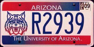 Arizona Wildcats University of AZ License Plate █▀▄▀▄