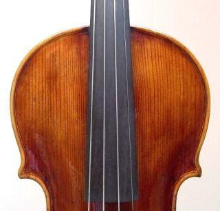 Italian Labeled Violin Armando Giulietti 1968   Rich & Open Tone