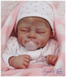 Sugar Plum Nursery Reborn Baby Girl Doll Andi Linda Murray The Cradle
