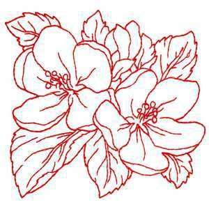 Brother Babylock Embroidery Machine Card Redwork Flowers