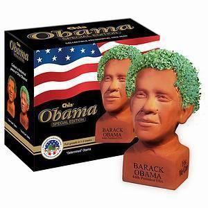 President Barack Obama Chia Pet  Hot