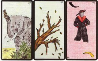 France Cartes L´ Oracle GE Tarot Deck by Gerard Barbier