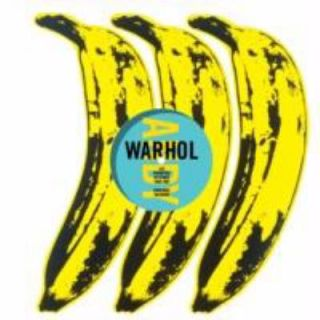 Andy Warhol  The Record Covers 1949 1987 Catalogue Raisonné by Paul