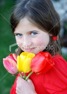 stock photo 9620709 little girl with tulips
