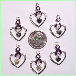 You will receive (6 ) New Awareness Purple Ribbons/Heart Charms